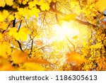 the sun framed by yellow... | Shutterstock . vector #1186305613