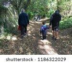 rottingdean  uk   september... | Shutterstock . vector #1186322029