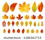 vector illustration of ... | Shutterstock .eps vector #1186361713