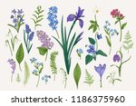 set with spring and summer... | Shutterstock .eps vector #1186375960
