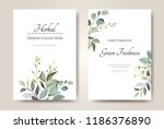 set of card with herbs  leaves. ... | Shutterstock .eps vector #1186376890