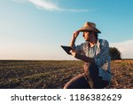 farmer agronomist with tablet... | Shutterstock . vector #1186382629