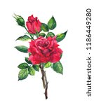 red roses bouquet. watercolor... | Shutterstock . vector #1186449280