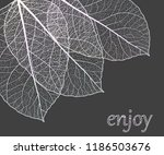 beautiful background with... | Shutterstock .eps vector #1186503676