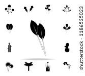 swiss chard icon. plants icons... | Shutterstock .eps vector #1186535023