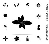 mint icon. plants icons... | Shutterstock .eps vector #1186535029