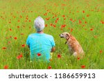 man and dog sitting in field... | Shutterstock . vector #1186659913