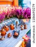 bulbs of flowers ready for... | Shutterstock . vector #1186693279