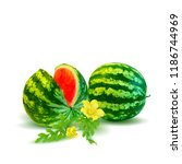 fresh  nutritious and tasty... | Shutterstock .eps vector #1186744969