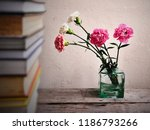 pink and white carnation... | Shutterstock . vector #1186793266
