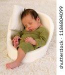adorable african newborn baby... | Shutterstock . vector #1186804099