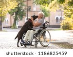 Stock photo senior woman in wheelchair and her dog outdoors 1186825459
