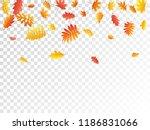 oak  maple  wild ash rowan... | Shutterstock .eps vector #1186831066