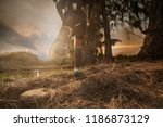 trail running at the sunset | Shutterstock . vector #1186873129