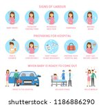 signs of labour and preparing... | Shutterstock .eps vector #1186886290