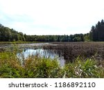 crow wing county minnesota | Shutterstock . vector #1186892110