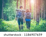amid the pine forests that... | Shutterstock . vector #1186907659