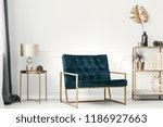 dark green sofa with golden... | Shutterstock . vector #1186927663