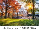 central park in new york city... | Shutterstock . vector #1186928896