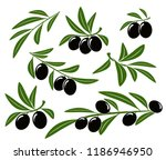 isolated olive branches set | Shutterstock .eps vector #1186946950
