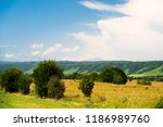 bright summer landscape of... | Shutterstock . vector #1186989760