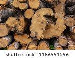 Background Split Logs Birch...