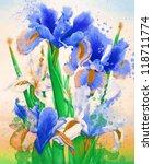 Bouquet Of Irises. Watercolor