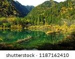 Jian Zhu Hai or arrow bamboo lake in Jiuahzigou during autumn.