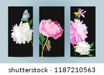 a picturesque peony flower....   Shutterstock .eps vector #1187210563