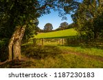 public footpath with a wooden... | Shutterstock . vector #1187230183