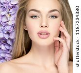 beautiful young blonde woman... | Shutterstock . vector #1187234380