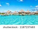 in bora bora polynesia the sea... | Shutterstock . vector #1187237683