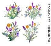 watercolor. field flowers....   Shutterstock . vector #1187249026