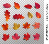 autumn leaf pack. realistic...   Shutterstock .eps vector #1187342539