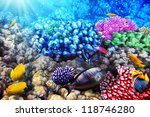 coral and fish in the red sea... | Shutterstock . vector #118746280