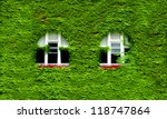 Windows and red brick covered in green ivy - stock photo