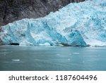 face of the northwestern... | Shutterstock . vector #1187604496