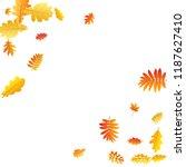 oak  maple  wild ash rowan... | Shutterstock .eps vector #1187627410