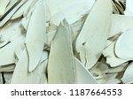 chinese herbal medicine ... | Shutterstock . vector #1187664553