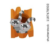 two cute raccoons peeping out... | Shutterstock .eps vector #1187678503