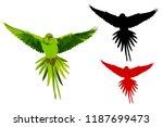 cute bird parrot flying.... | Shutterstock .eps vector #1187699473