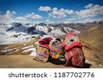 contemplating the andes | Shutterstock . vector #1187702776