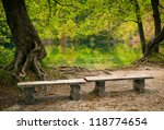Two Benches In The Park