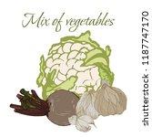 illustration of tasty veggies.... | Shutterstock .eps vector #1187747170