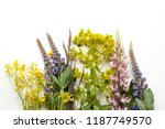 floral background with... | Shutterstock . vector #1187749570