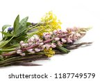 floral background with... | Shutterstock . vector #1187749579