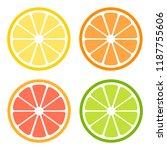 Citrus Slices Of Lemon  Orange  ...