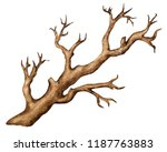 watercolor bare tree isolated... | Shutterstock . vector #1187763883