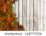 autumn background with leaves | Shutterstock . vector #118777378