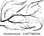 watercolor illustration  set... | Shutterstock . vector #1187788336
